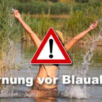 Blaualgen Warnung