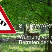 Sturmwarnung Tiergarten