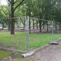 Forschungsfläche Strassenbaum