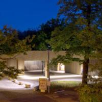 Lichtinstallation Zoo