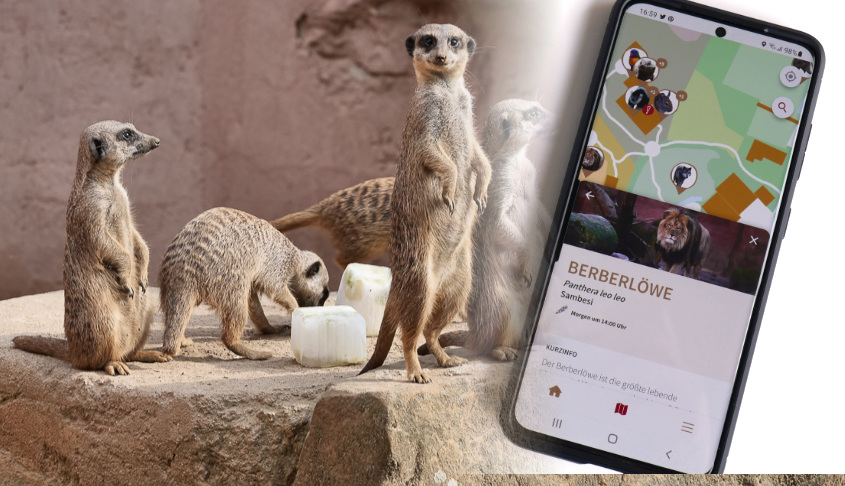 Erlebnis-Zoo App